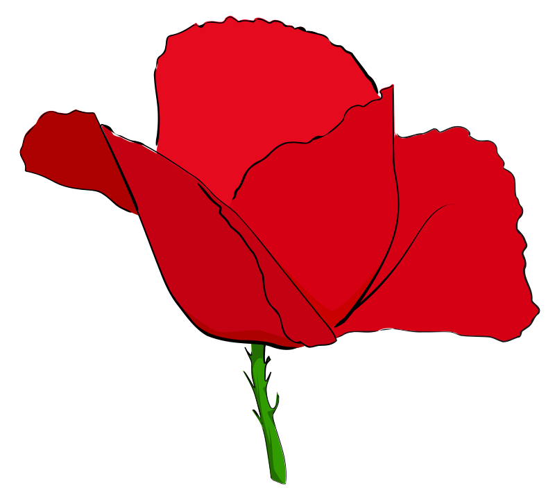 Free Clipart: Coquelicot rouge.