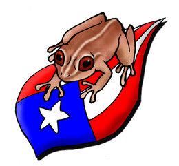 Download puerto rican coqui drawing clipart Puerto Rico Common coquí.