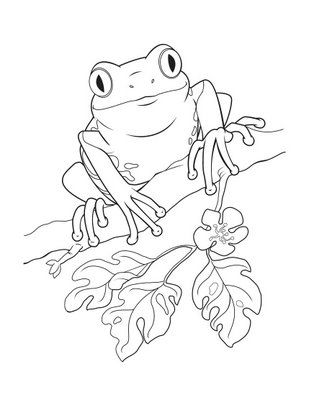 puerto rico coloring pages.