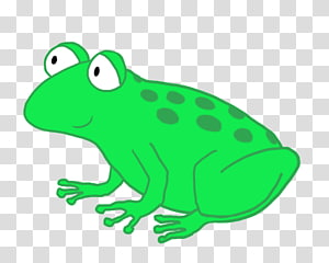 Coqui PNG clipart images free download.