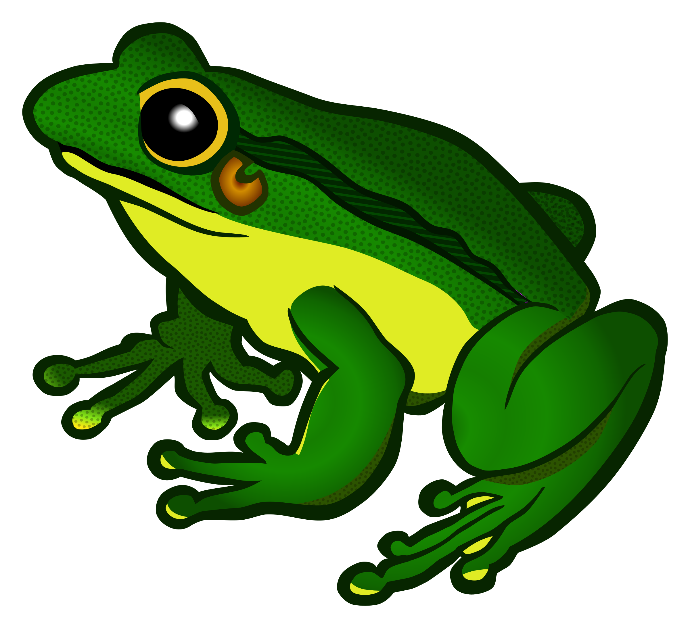 Tree Frogs Clipart.