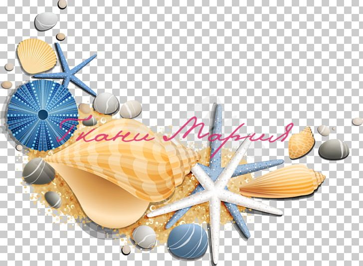 Restaurant Le Coquillage Oyster Seashell PNG, Clipart, Animals.