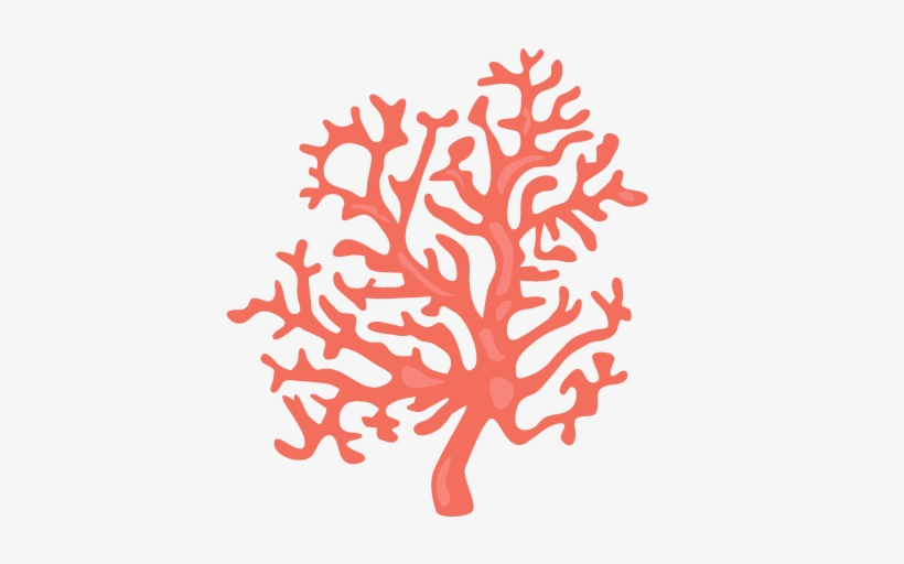 Coral Clipart Png.