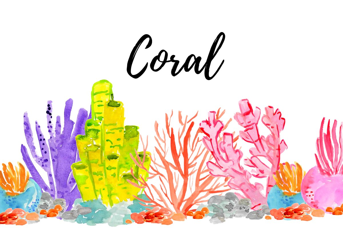 Watercolor Summer Coral Clipart.