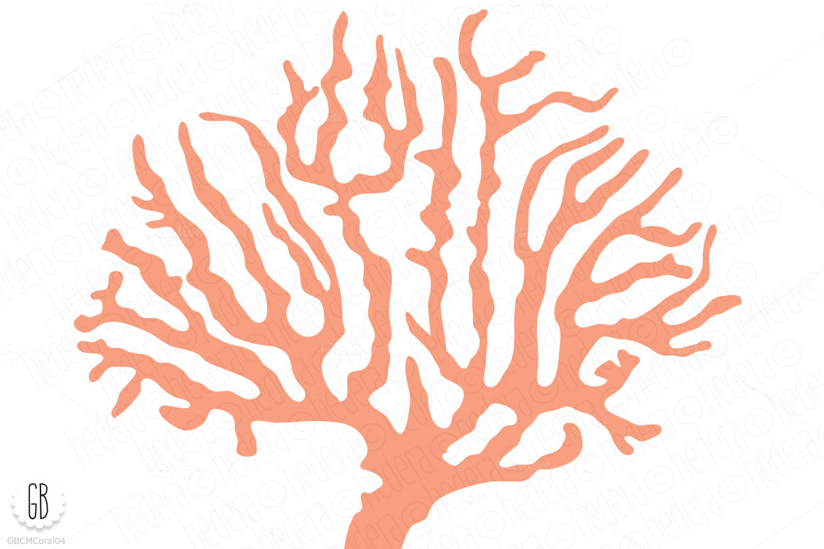 Coral clipart - Clipground
