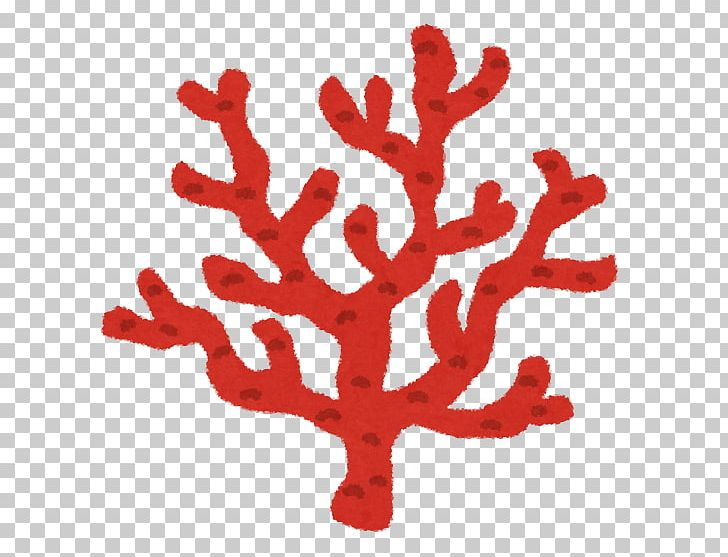 Coral Reef いらすとや Red Coral PNG, Clipart, Animal, Branch.