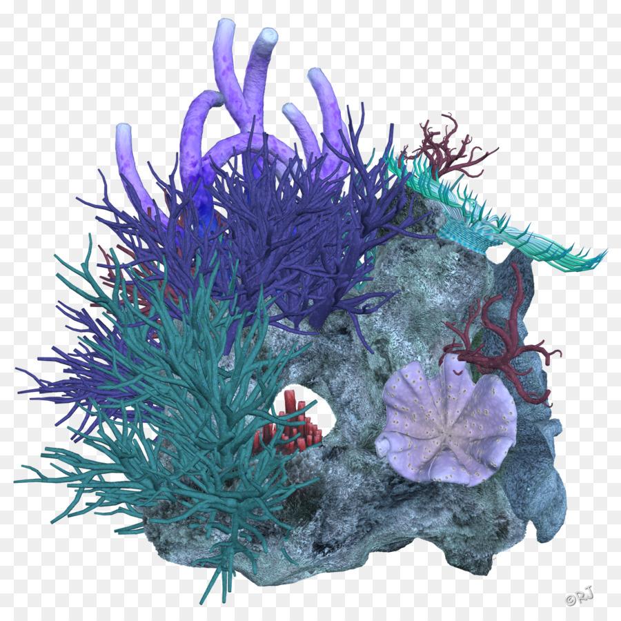 Coral Reef Deep Sea.