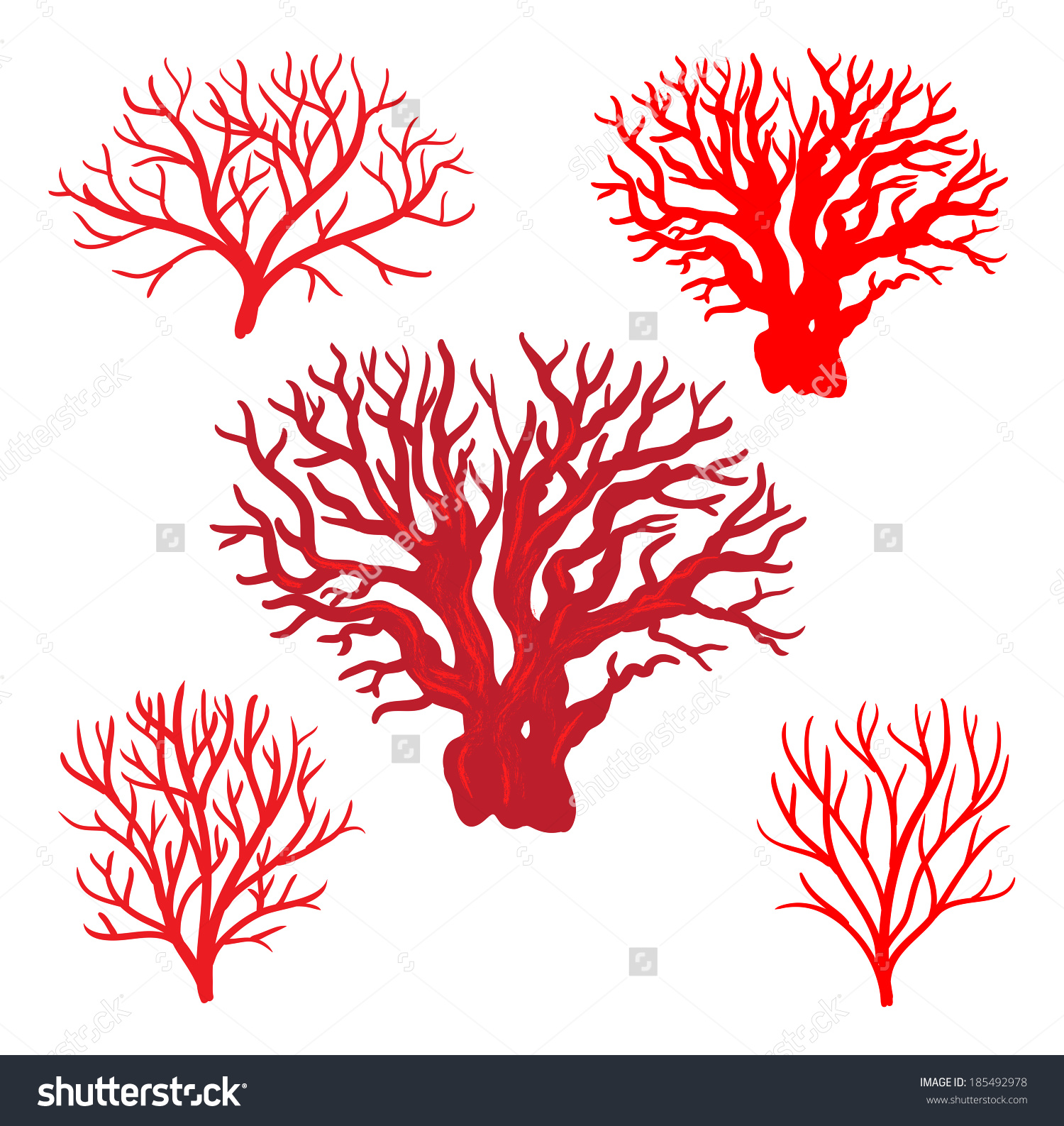 Red Corals Stock Vector 185492978.