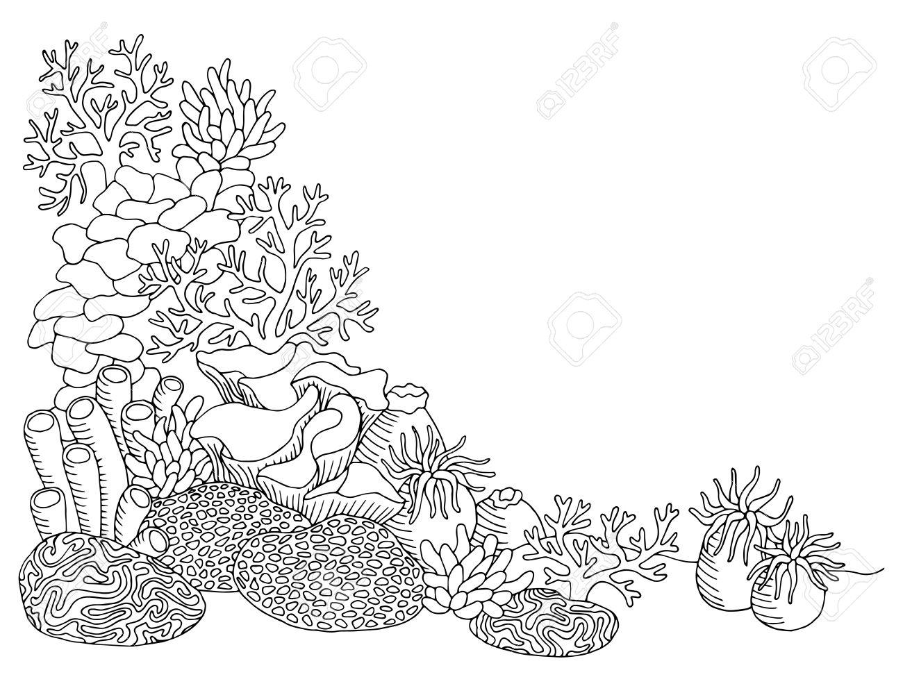 Coral sea graphic art black white underwater landscape illustration...