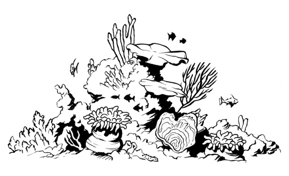 Coral Reef Clipart Black And White (101+ images in Collection) Page 2.