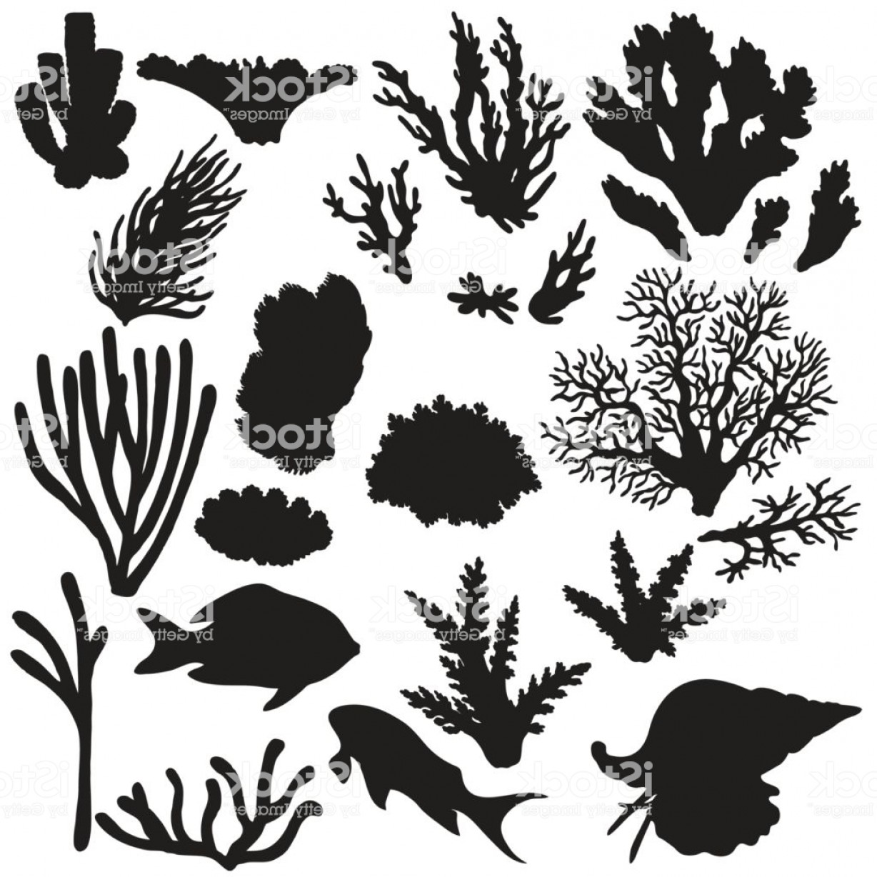 Reef Animals And Corals Silhouette Set Gm.
