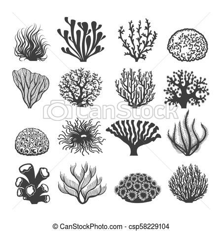 Black aquatic corals set.