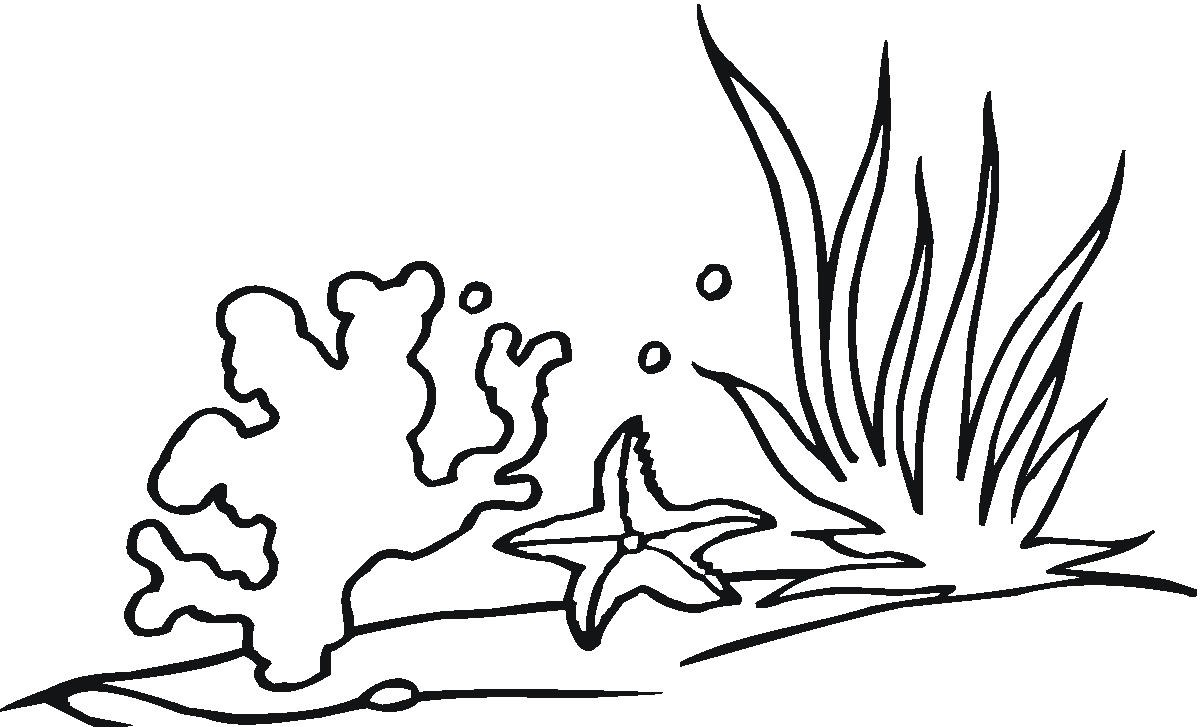 Coral Clipart Black And White.