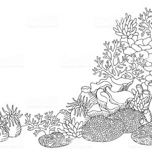 Free Clipart Of A Coral Reef.