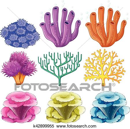Different types of coral reef Clipart.