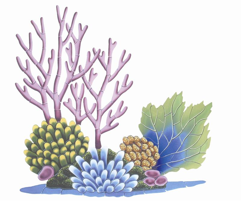 Coral reef clipart #3