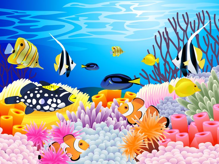 Coral reef clipart 7.