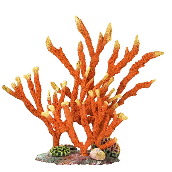 Download Free png Flat Reef with Fingersponges Orange.