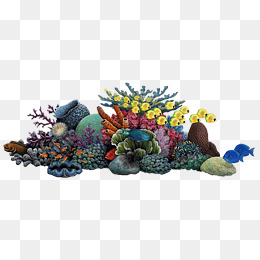 Coral Reef Png Free & Free Coral Reef.png Transparent Images #22940.