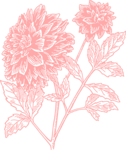 Coral flower clip art.
