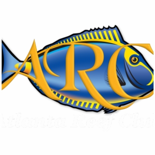 Coral Reef Clipart PNG Images.