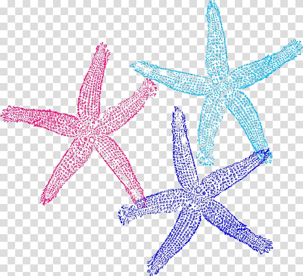 Coral Starfish , colored starfish transparent background PNG.