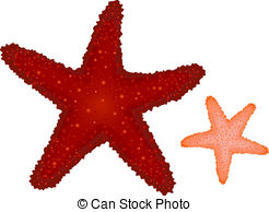 Coral Clipart and Stock Illustrations. 9,711 Coral vector EPS.