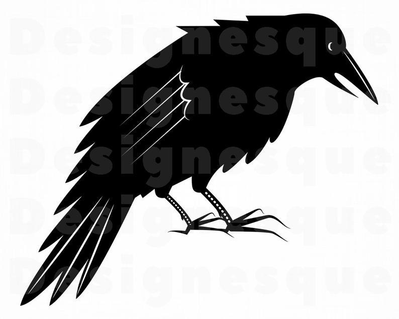Corbeau SVG, Svg de Corbeau, Corbeau Clipart, fichiers Corbeau pour Cricut,  Raven couper des fichiers pour Silhouette, Dxf Raven, Raven Png, Eps.
