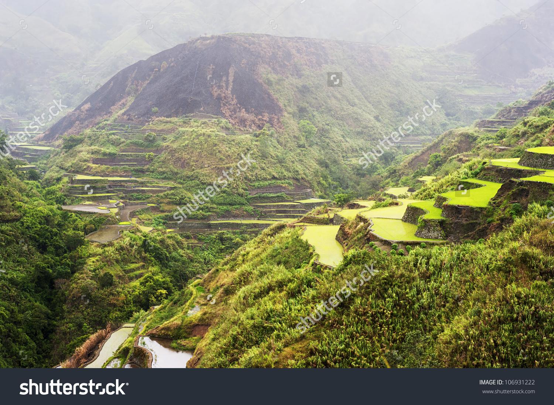 Rice Terrace In The Rain. Cordillera Mountains, Luzon, Philippines.