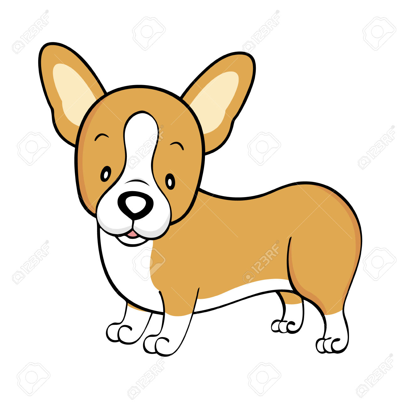 Welsh Corgi Isolated Royalty Free Cliparts, Vectors, And Stock.