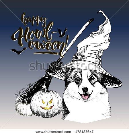 Witch Dog Fotografie, snímky pro členy zdarma a vektory.