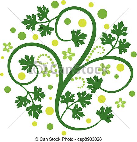 Coriander Clipart and Stock Illustrations. 432 Coriander vector.