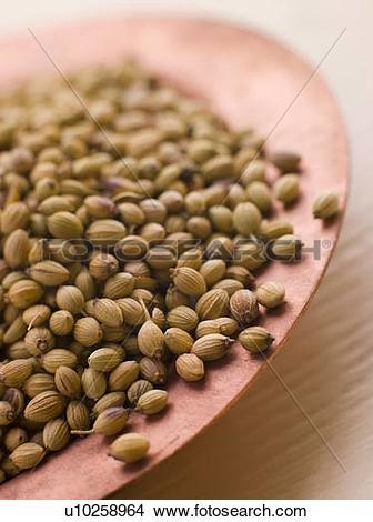 Stock Photo of Dish of Coriander Seeds u10258964.