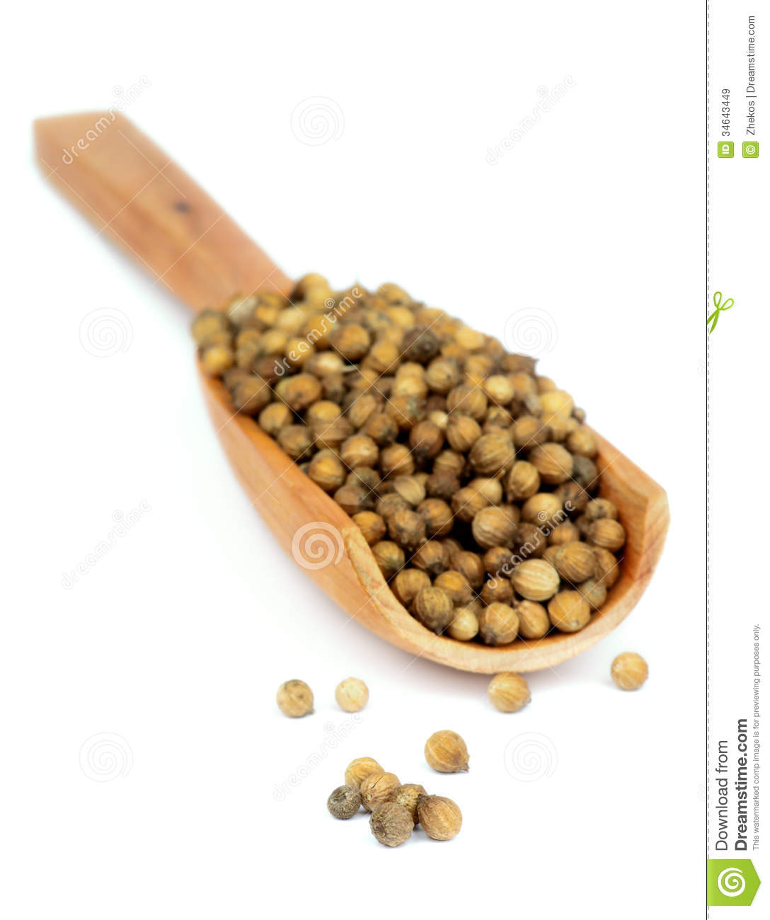 Coriander Seeds Royalty Free Stock Images.