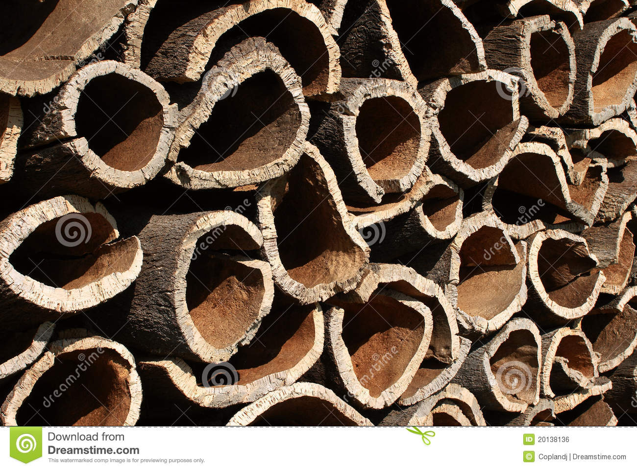 Cork Oak Bark Royalty Free Stock Image.