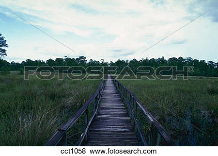 Pictures of Boardwalk over marsh, National Audubon Society's.