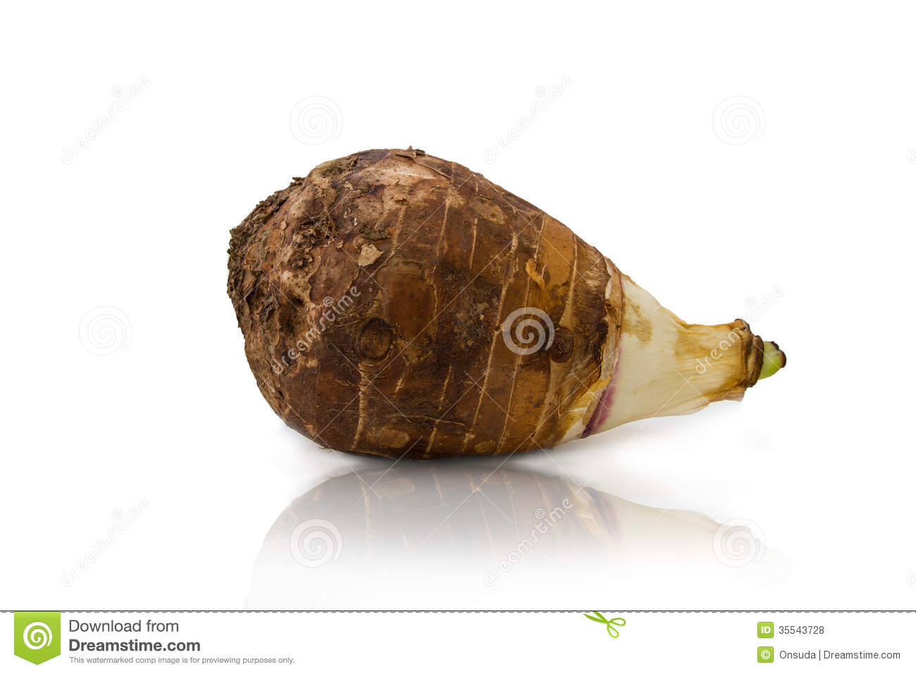 Corm Stock Photos, Images, & Pictures.