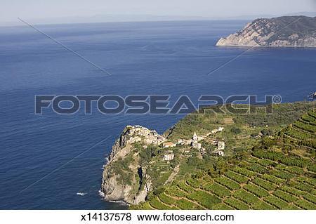 Pictures of Italy. Liguria. Cinque Terre. Corniglia. x14137578.