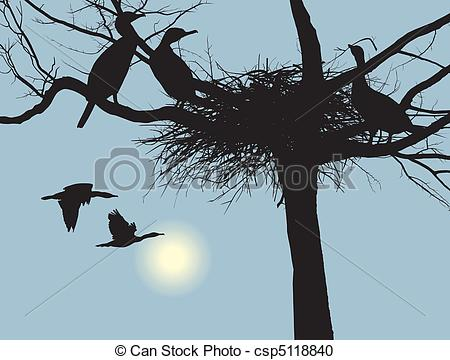 Clipart Vecteur de nesting, Cormorans.