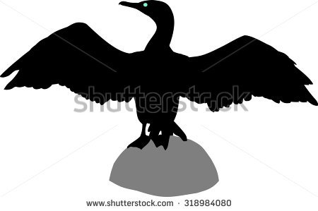 Cormorant Stock Vectors, Images & Vector Art.