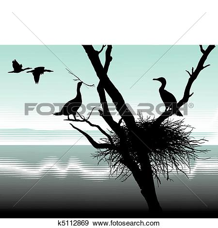 Clip Art of Cormorants at nest k5112869.