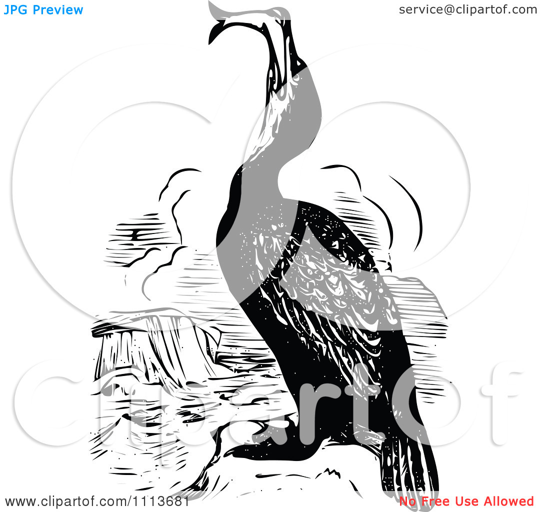 Clipart Vintage Black And White Cormorant Eating A Fish.
