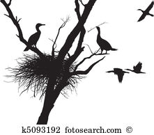 Cormorants Clip Art Vector Graphics. 115 cormorants EPS clipart.