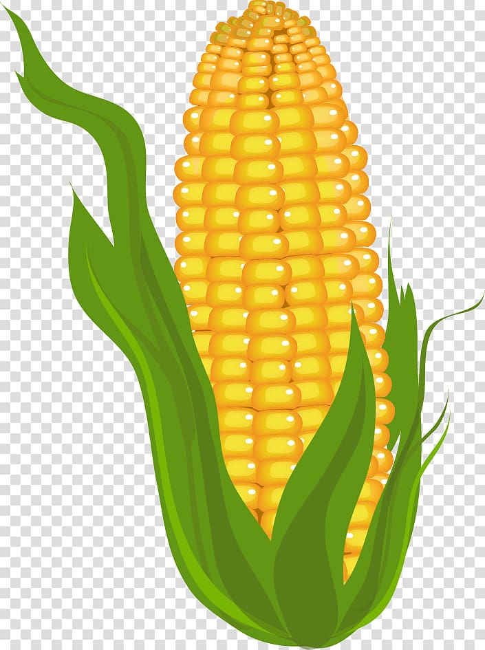Candy corn Corn on the cob Maize , commodity transparent.