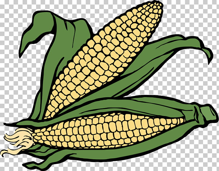 Crop Farm Agriculture , Ear Of Corn PNG clipart.