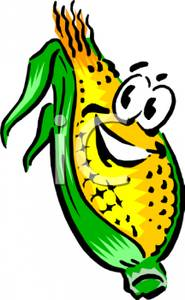 Ear of corn clipart.