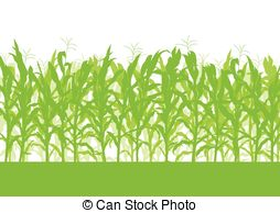 Corn field Clipart and Stock Illustrations. 5,453 Corn field.