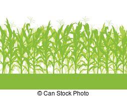 Maize field clipart #11