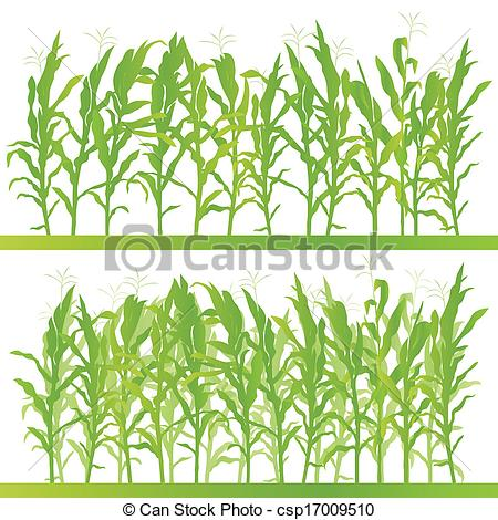 Maize field clipart #15