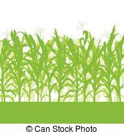 Maize field clipart #4